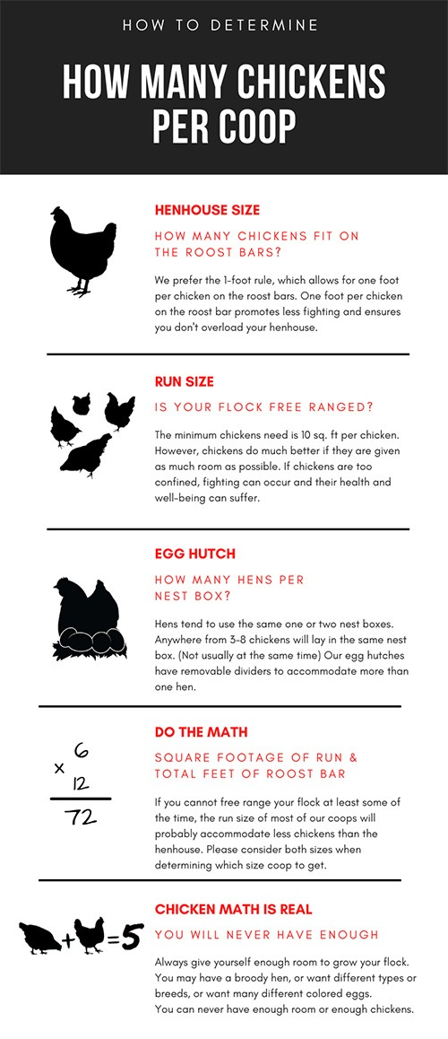 Carolina Coops infographic - How many chickens will fit in my coop