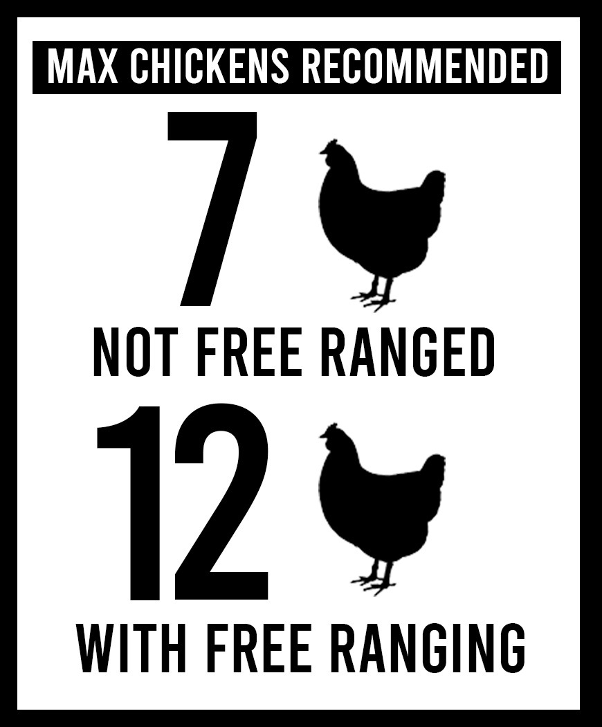 chicken amounts for-6x12 not free ranged