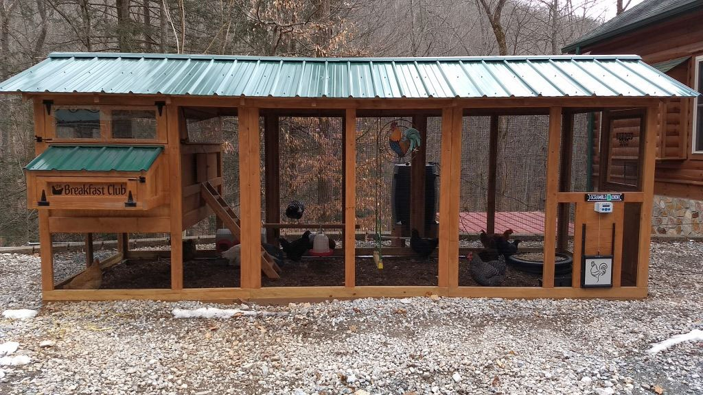 6×18 American Coop stained with green roof and automatic chicken run door