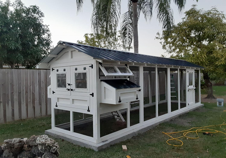 6×24 American Coop in Miami, Florida with Dutch door