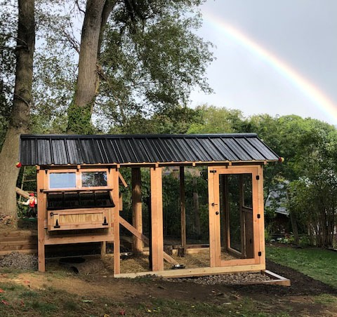 Something to keep in mind when preparing for your coop is that you want your run to mimic what your flock would find in nature. Natural, organic substrates work great in your coop run area. You can use a compost material, topsoil, untreated mulch, leaves, grass clippings, or wood chips. The last three can be added in the run periodically to bring interest back to the run for your flock. A couple things to avoid as substrates for your run are cedar mulch and pine straw. Due to the sensitivity of a chicken's respiratory system, the odor emitted from cedar mulch can be detrimental to your flock. Pine straw is too acidic to be digested. (Note: Pine straw is not to be confused with PINE SHAVINGS! Pine shavings are perfectly fine to use in your run, although it does tend to be a bit of a mess should your run area get wet. The shavings tend to clump together and not dry well.) The key is to keep your flock happy and healthy by giving them a natural environment for them to forage for bugs, take a dust bath, and allow for beneficial microbes in the ground to do their job.