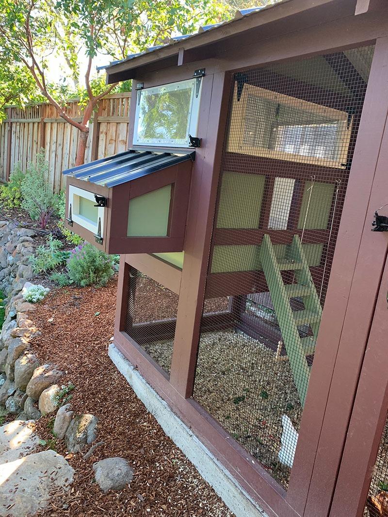 Egg hutch on a California Coop in Oakland California