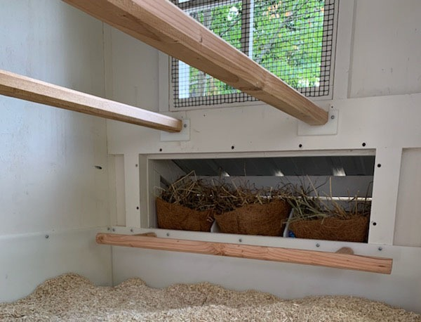 Henhouse interior with nest boxes in Craftsman Coop