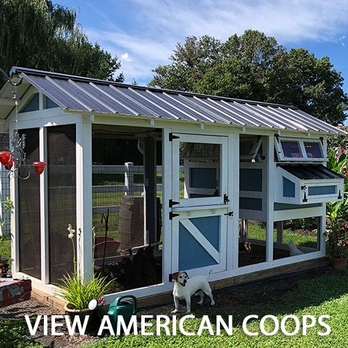 Carolina Coops - AMERICAN Coops Gallery