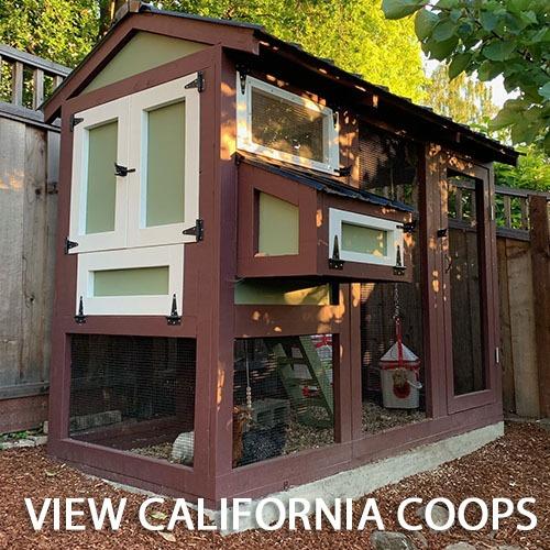 Carolina Coops - CALI Coops Gallery