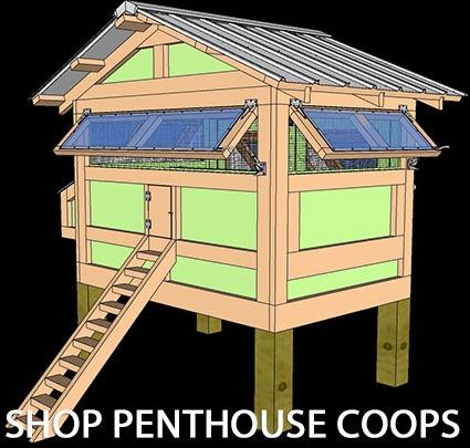 SHOP PENTHOUSE COOPS