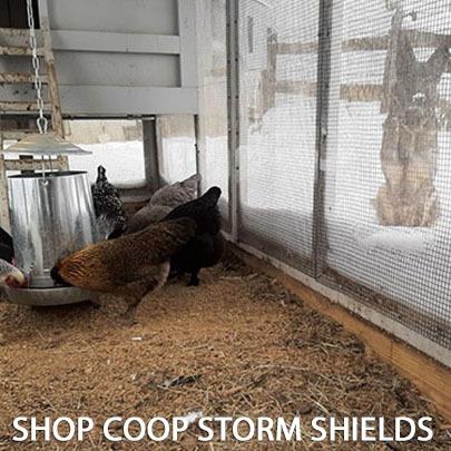 SHOP coop storm shields