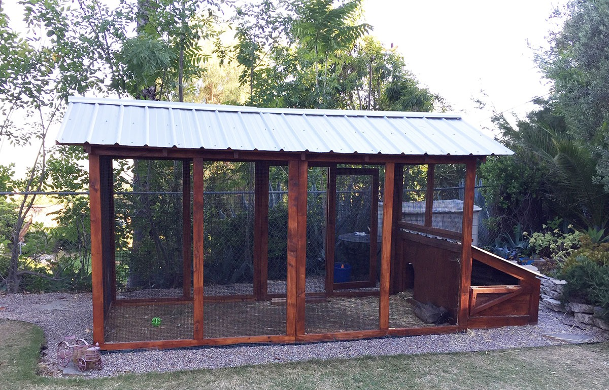 6×12 American Duck Coop with duck house in California